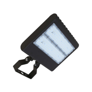 FL3 Multi-Mount Flood Light 100W